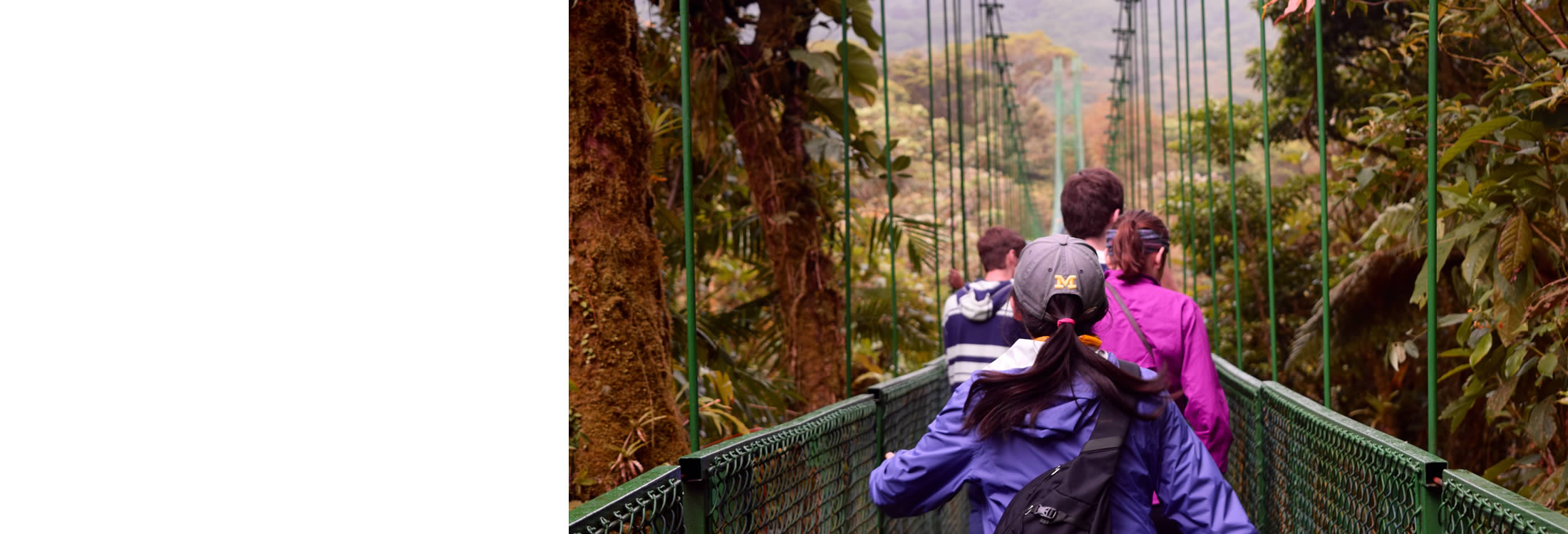 Photo of BA students walking on a pedestrian bridge above a Costa Rican forest