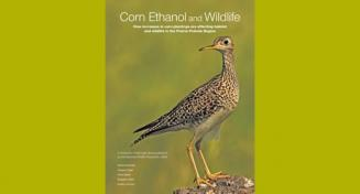 Link to:MPP student Greg Fogel co-authors National Wildlife Federation report on affect of corn ethanol expansion on wildlife