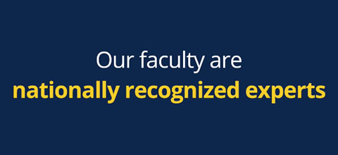 Link to:Our Faculty: Who will inspire you?